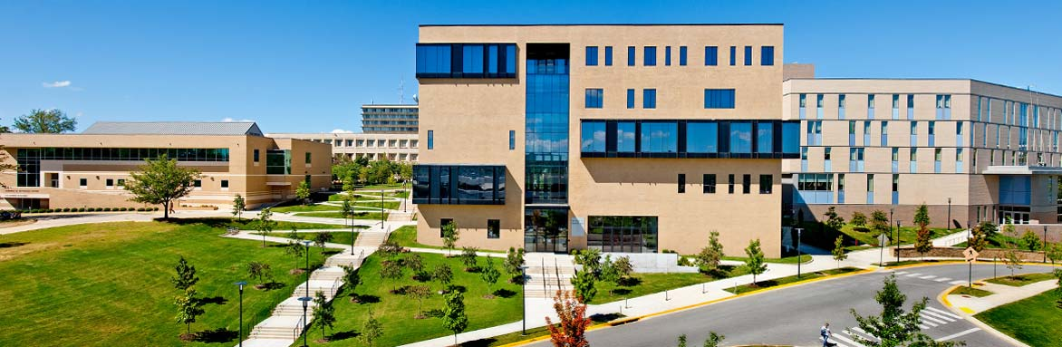 Enterprise Resource Planning Graduate Certificate